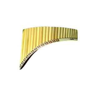 Alex Syrik startede i 1977 som professionel musiker Preda panfløjte 22 tube